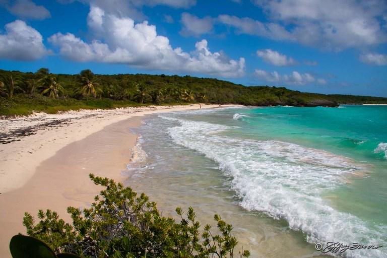 beach-puerto-rico