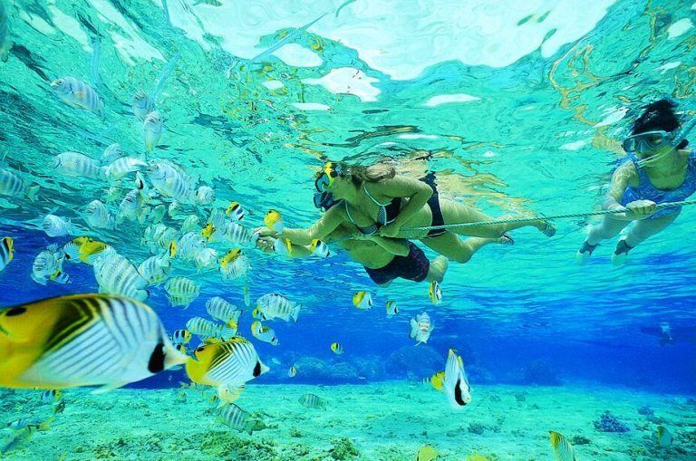 snorkeling[1]